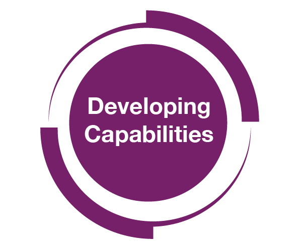 Developing Capabilities