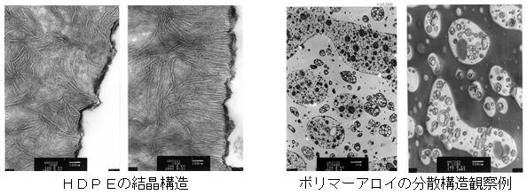 HDPEの結晶構造・ポリマーアロイの分散構造観察例