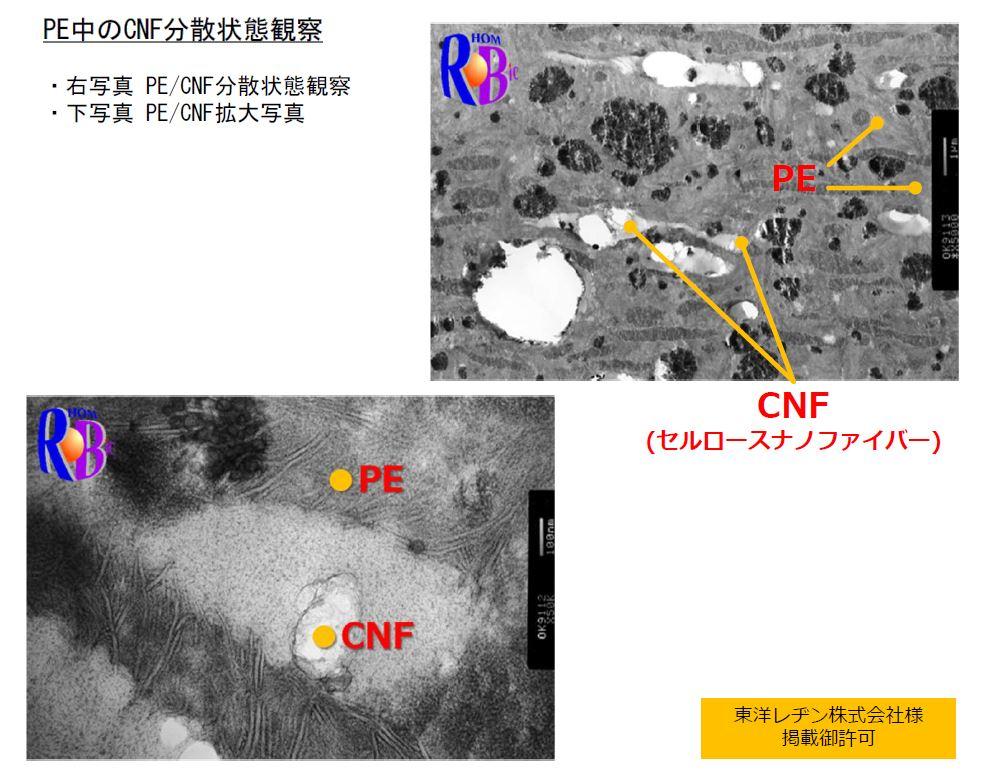 PE中のCNFの分散状態観察